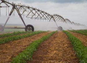 Aneel adequa prazos e mantem desconto na conta de energia elétrica para produtores irrigantes